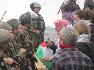 Protest in Nabi Saleh in the occupied West Bank on 7 December 2013