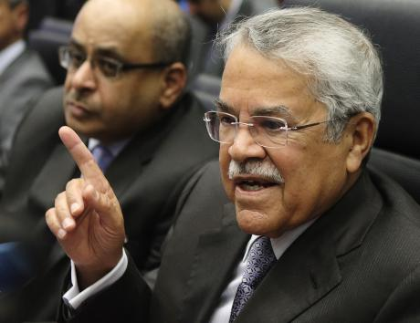 Saudi Arabia's Oil Minister al-Naimi talks to journalists before a meeting of OPEC oil ministers at OPEC's headquarters in Vienna